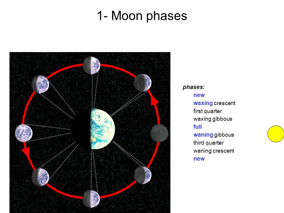 phases: new waxing crescent first quarter waxing gibbous full waning gibbous third quarter waning crescent new 1- Moon phases