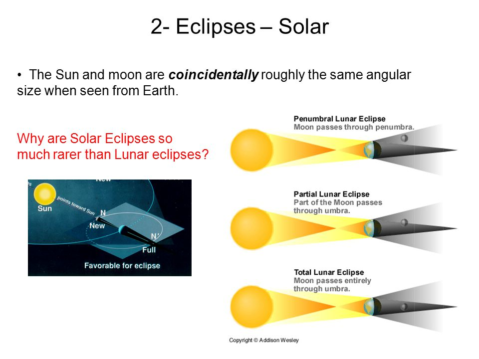 The Sun and moon are coincidentally roughly the same angular size when seen from Earth. Why are Solar Eclipses so much rarer than Lunar eclipses? 2- E
