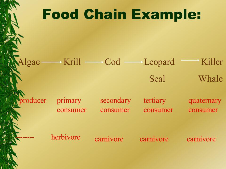 Food Chain Example: Algae Krill Cod Leopard Killer Seal Whale producerprimary consumer quaternary consumer tertiary consumer secondary consumer -------- herbivore carnivore