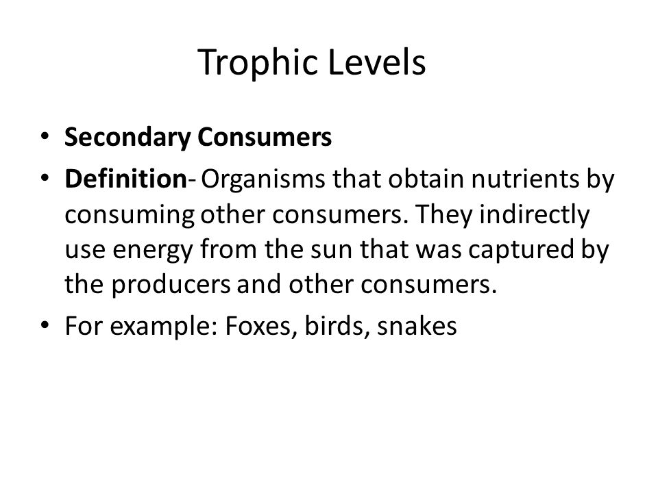 Trophic Levels Secondary Consumers Definition- Organisms that obtain nutrients by consuming other consumers.