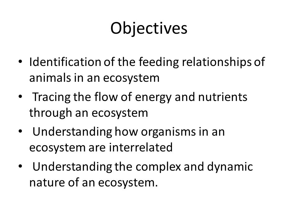 Objectives Identification of the feeding relationships of animals in an ecosystem Tracing the flow of energy and nutrients through an ecosystem Understanding how organisms in an ecosystem are interrelated Understanding the complex and dynamic nature of an ecosystem.