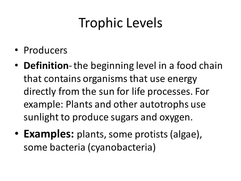 Trophic Levels Producers Definition- the beginning level in a food chain that contains organisms that use energy directly from the sun for life processes.
