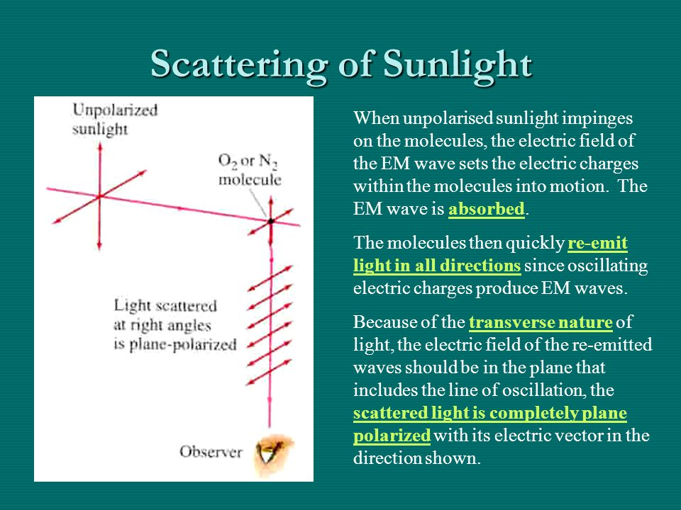 Scattering of Sunlight When unpolarised sunlight impinges on the molecules, the electric field of the EM wave sets the electric charges within the molecules into motion.