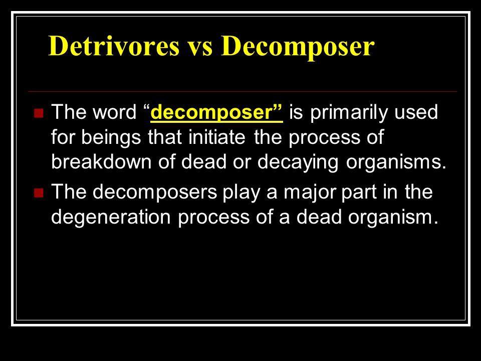 Both decomposers and detritivores feed on the same diet, it does not necessarily mean that they are of the same species.