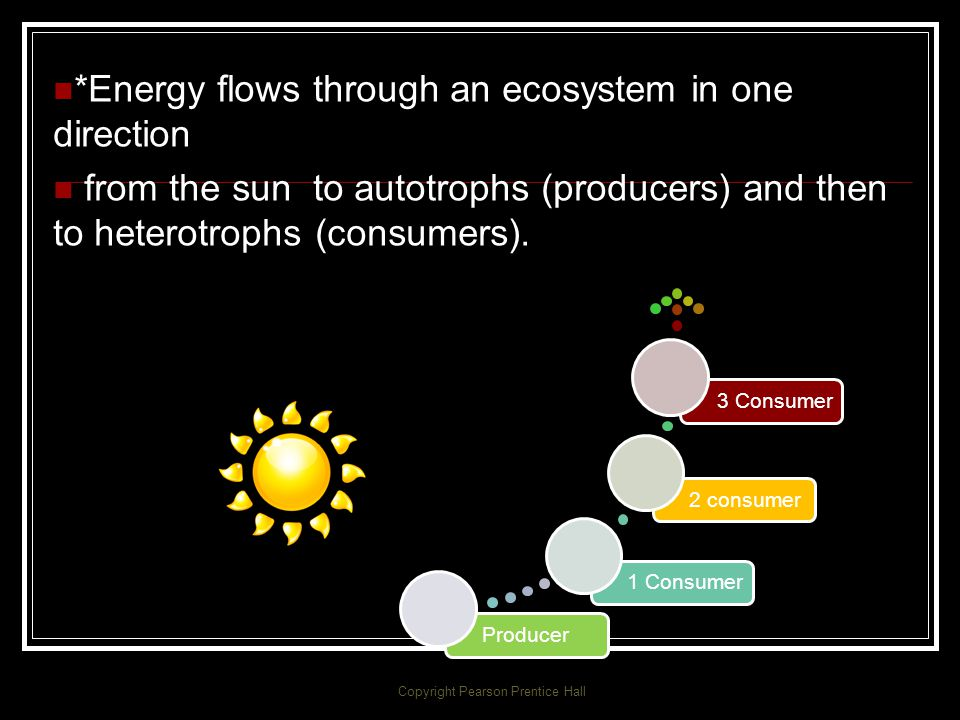 Feeding Relationships *How does energy flow through living systems? Copyright Pearson Prentice Hall