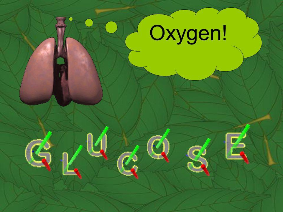 Oxygen!