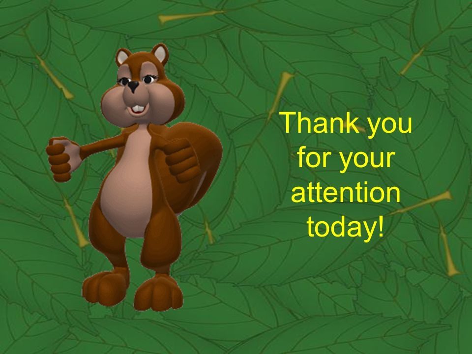 Thank you for your attention today!