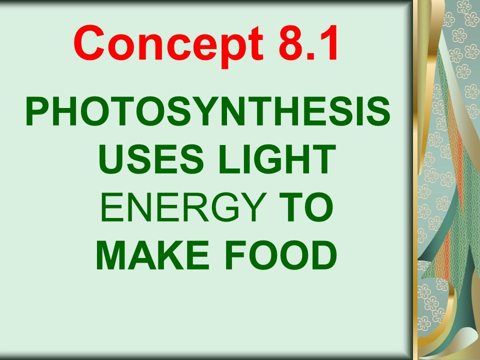 PHOTOSYNTHESIS Process that converts light energy to chemical energy Occurs in chloroplasts of green plants
