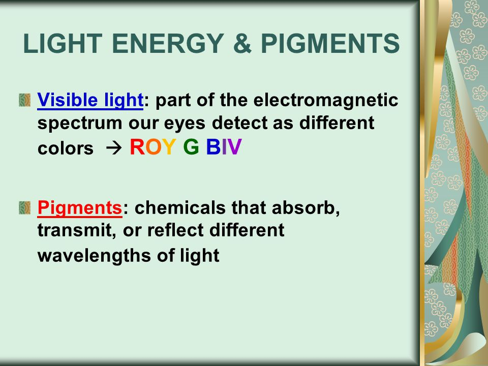 LIGHT ENERGY & PIGMENTS Visible light: part of the electromagnetic spectrum our eyes detect as different colors  ROY G BIV Pigments: chemicals that absorb, transmit, or reflect different wavelengths of light