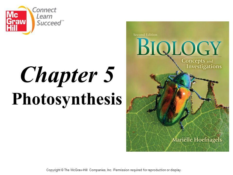 Copyright © The McGraw-Hill Companies, Inc. Permission required for reproduction or display. Chapter 5 Photosynthesis
