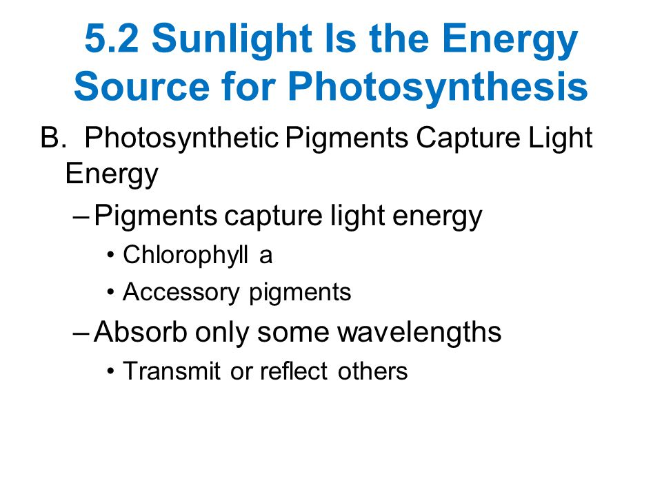 5.2 Sunlight Is the Energy Source for Photosynthesis B. Photosynthetic Pigments Capture Light Energy –Pigments capture light energy Chlorophyll a Acce