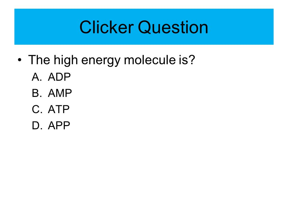Clicker Question The high energy molecule is? A.ADP B.AMP C.ATP D.APP