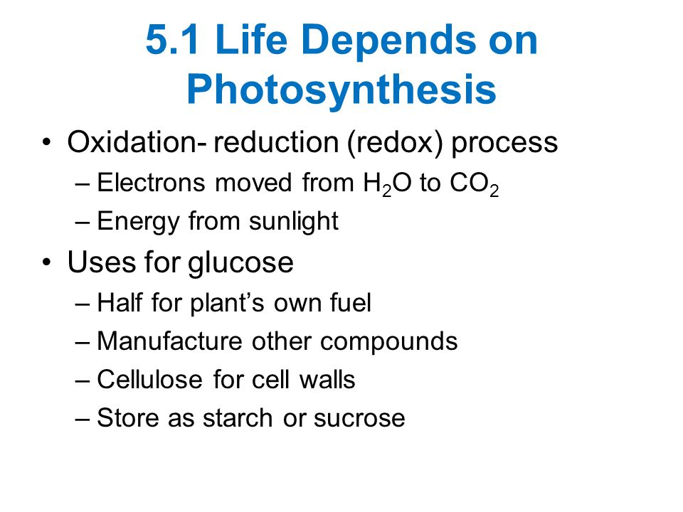 5.1 Life Depends on Photosynthesis Oxidation- reduction (redox) process –Electrons moved from H 2 O to CO 2 –Energy from sunlight Uses for glucose –Half for plant's own fuel –Manufacture other compounds –Cellulose for cell walls –Store as starch or sucrose