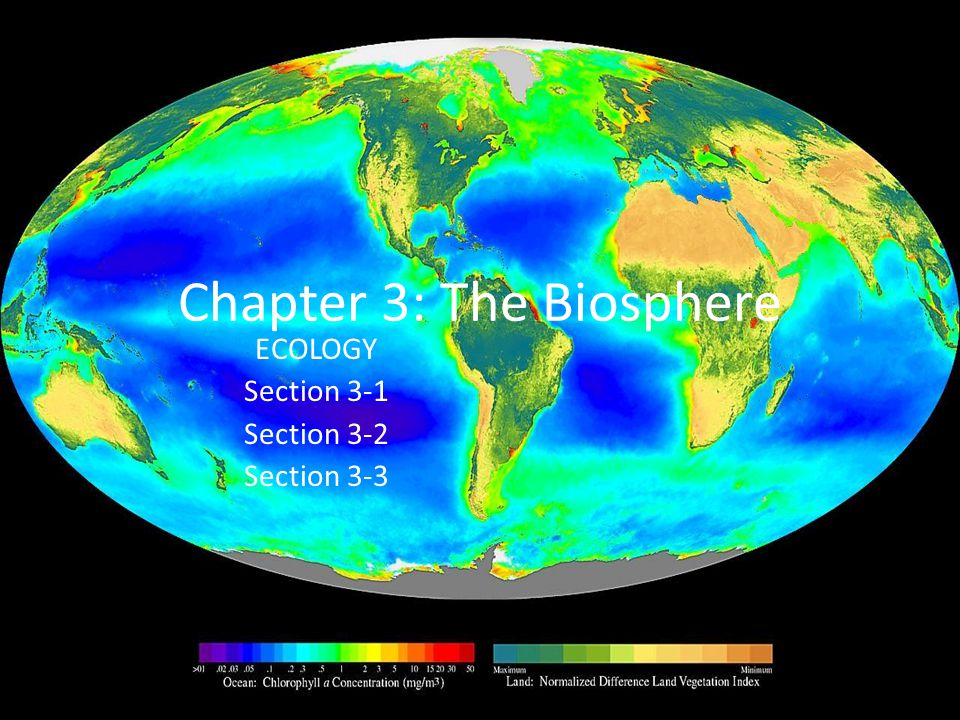 Chapter 3: The Biosphere ECOLOGY Section 3-1 Section 3-2 Section 3-3