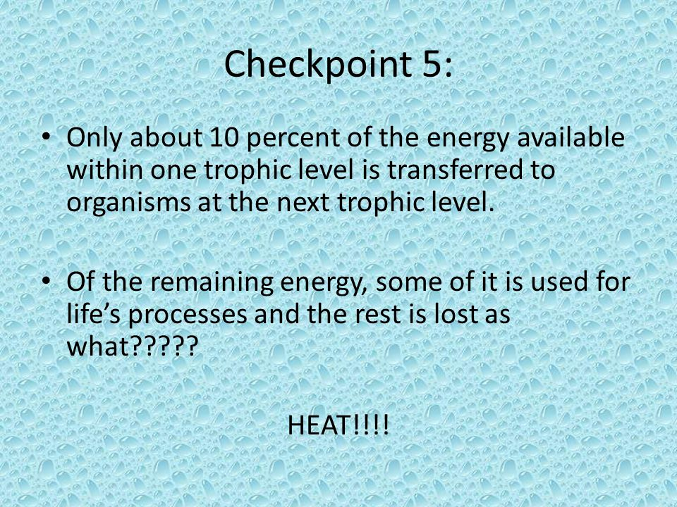 Checkpoint 5: Only about 10 percent of the energy available within one trophic level is transferred to organisms at the next trophic level. Of the rem