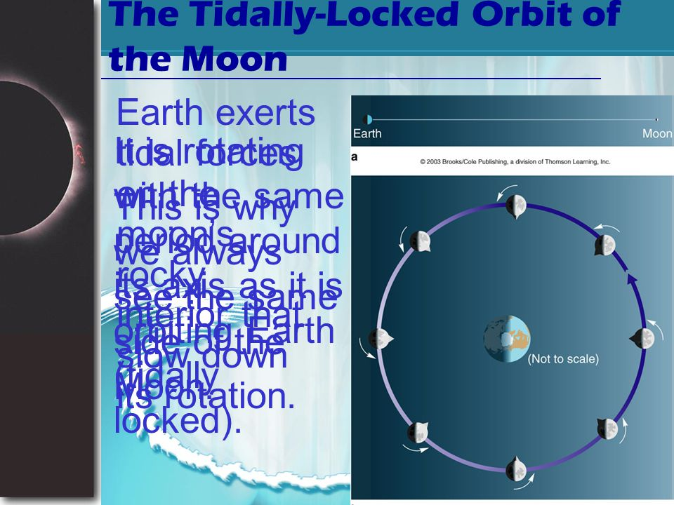 Slide 35 Effects of tides Slow down the rotation of earth Friction slows down the rotation The day was 18 hours long 900 mya