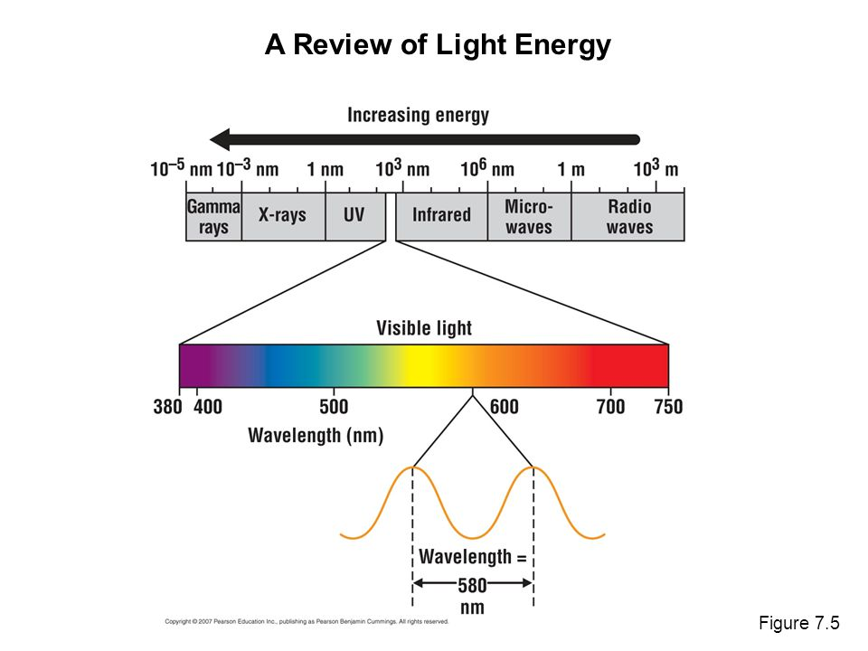Figure 7.5 A Review of Light Energy