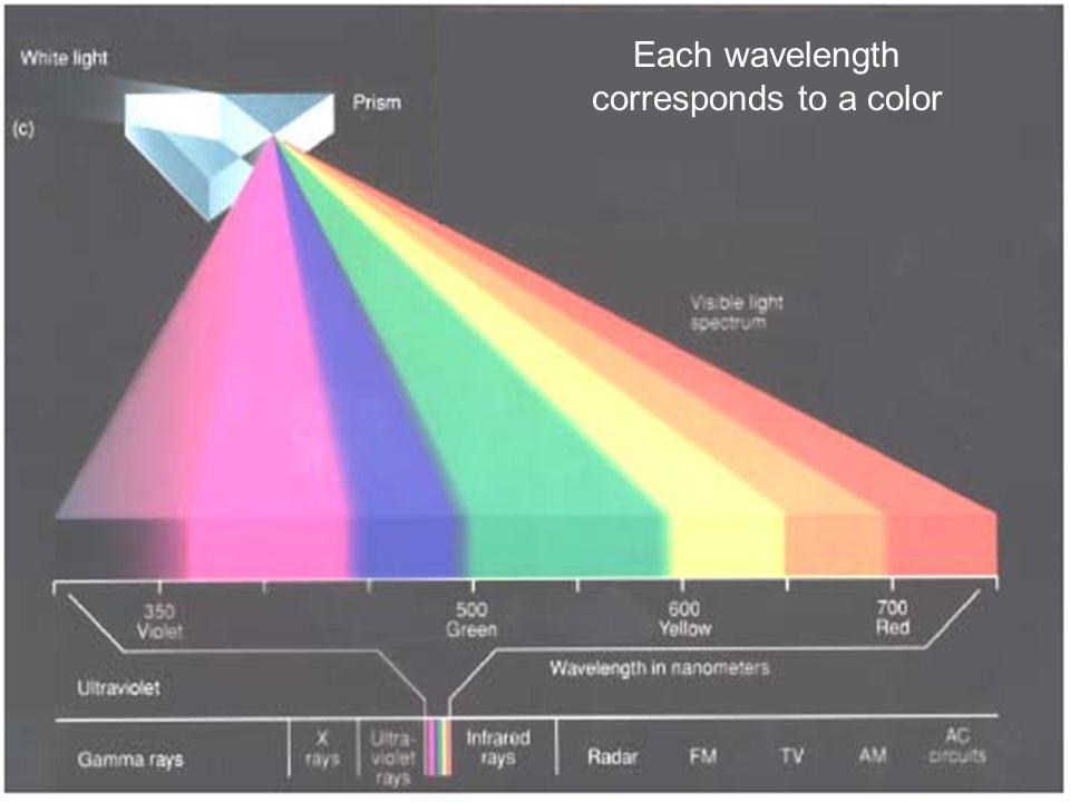 Sunlight Yellow-green light is the brightest part of sunlight.