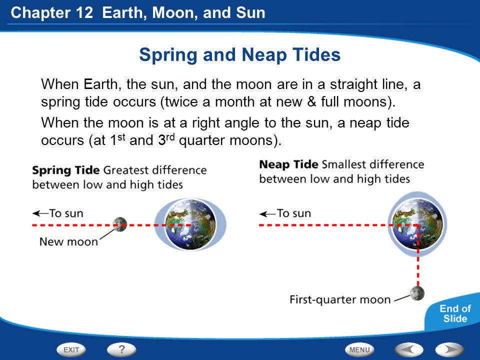 Chapter 12 Earth, Moon, and Sun Spring and Neap Tides When Earth, the sun, and the moon are in a straight line, a spring tide occurs (twice a month at