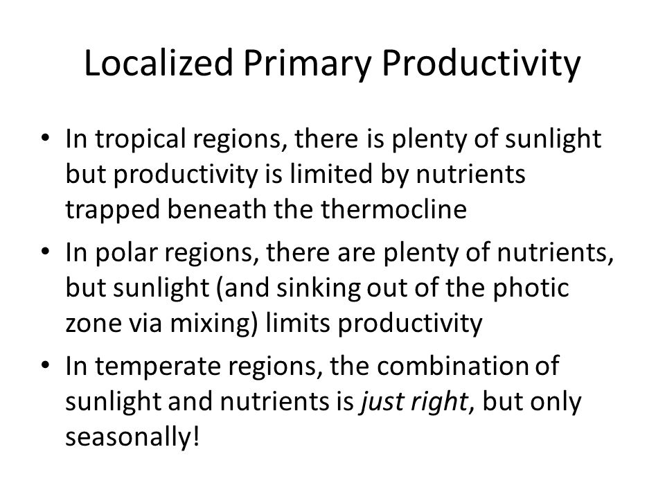 Localized Primary Productivity In tropical regions, there is plenty of sunlight but productivity is limited by nutrients trapped beneath the thermocline In polar regions, there are plenty of nutrients, but sunlight (and sinking out of the photic zone via mixing) limits productivity In temperate regions, the combination of sunlight and nutrients is just right, but only seasonally!