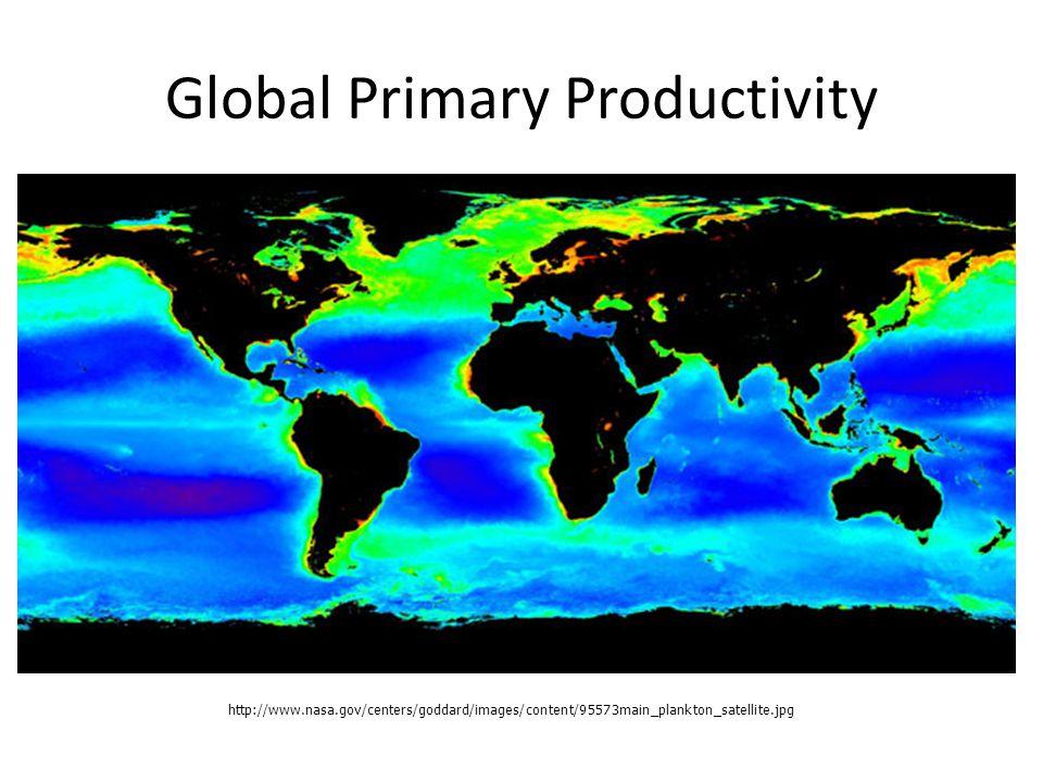 http://www.nasa.gov/centers/goddard/images/content/95573main_plankton_satellite.jpg Global Primary Productivity