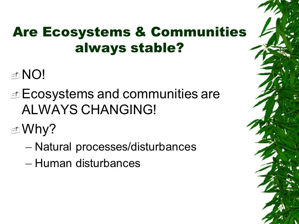 Are Ecosystems & Communities always stable? NNO! EEcosystems and communities are ALWAYS CHANGING! WWhy? –N–Natural processes/disturbances –H–Hum