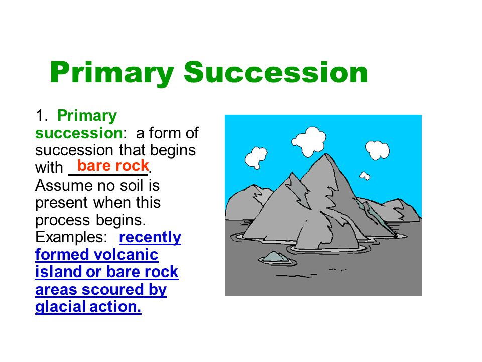 Primary Succession 1. Primary succession: a form of succession that begins with _ _. Assume no soil is present when this process begins. Examples: rec