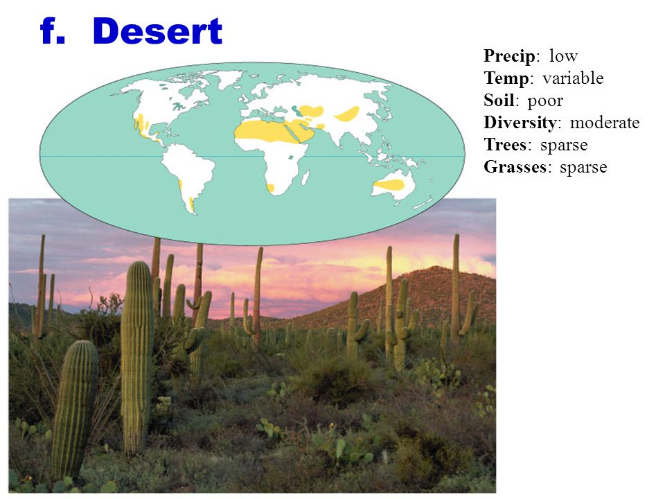 f. Desert Precip: low Temp: variable Soil: poor Diversity: moderate Trees: sparse Grasses: sparse