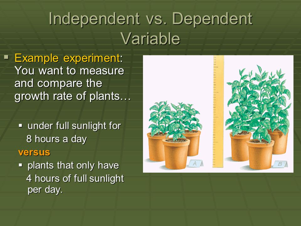 Independent vs. Dependent Variable  Example experiment: You want to measure and compare the growth rate of plants…  under full sunlight for 8 hours