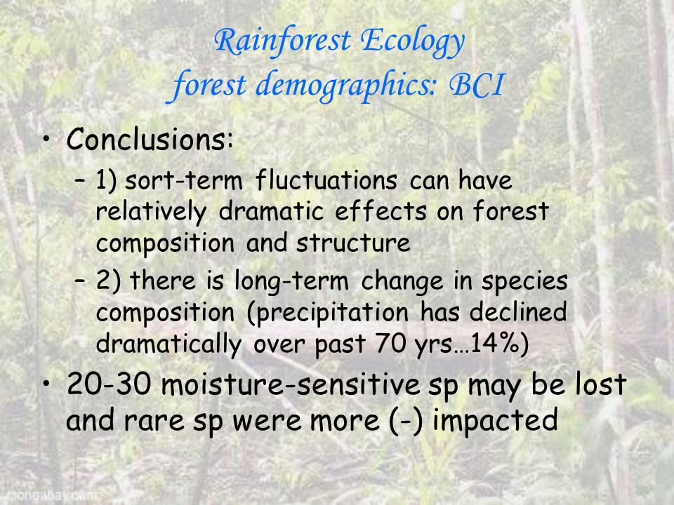 Rainforest Ecology forest demographics: BCI Conclusions: –1) sort-term fluctuations can have relatively dramatic effects on forest composition and structure –2) there is long-term change in species composition (precipitation has declined dramatically over past 70 yrs…14%) 20-30 moisture-sensitive sp may be lost and rare sp were more (-) impacted