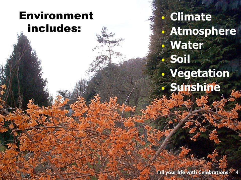 4 Environment includes: Climate Atmosphere Water Soil Vegetation Sunshine Fill your life with Celebrations 4