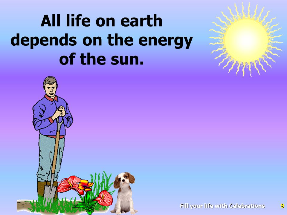Fill your life with Celebrations20 Those who are insufficiently exposed to the sun-all require vitamin D supplementation.