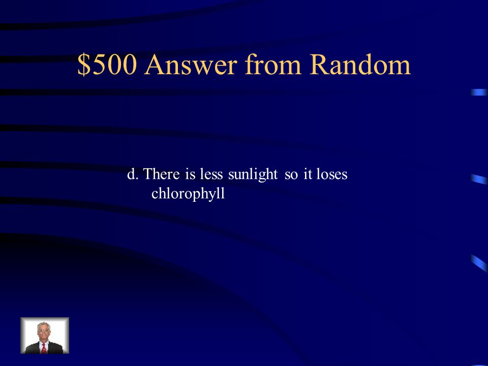 $500 Question from Random The leaf shown below is found in the temperate deciduous forest.