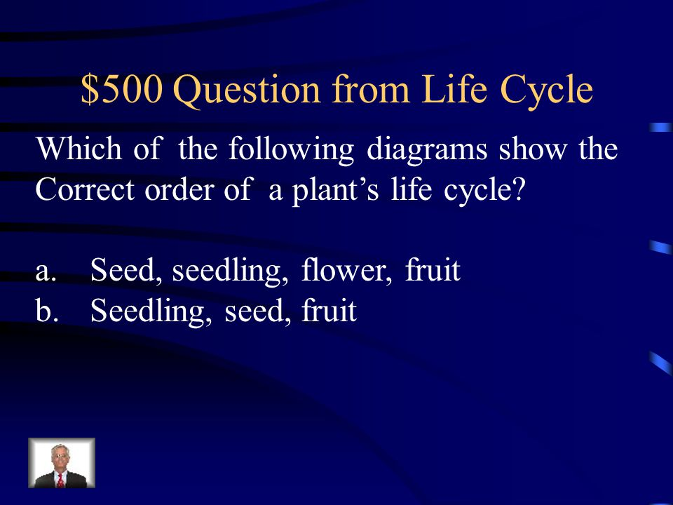 $400 Answer from Life Cycle Mature plant