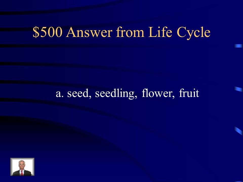 $500 Question from Life Cycle Which of the following diagrams show the Correct order of a plant's life cycle.