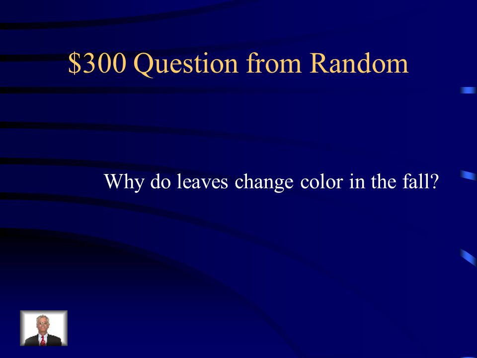 $200 Answer from Random germinate