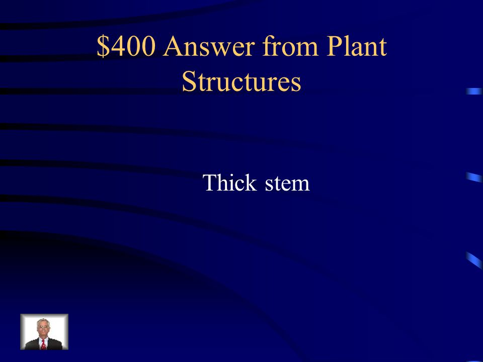 $400 Question from Plant Structures The plants shown below are able to survive forest fires.