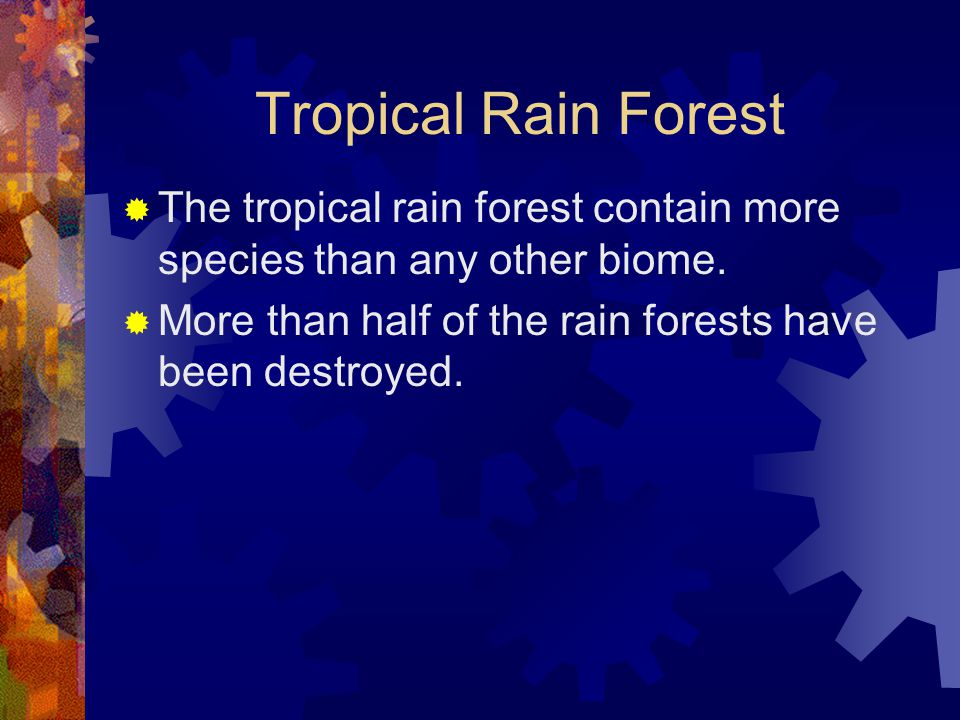 Tropical Rain Forest  The tropical rain forest contain more species than any other biome.  More than half of the rain forests have been destroyed.