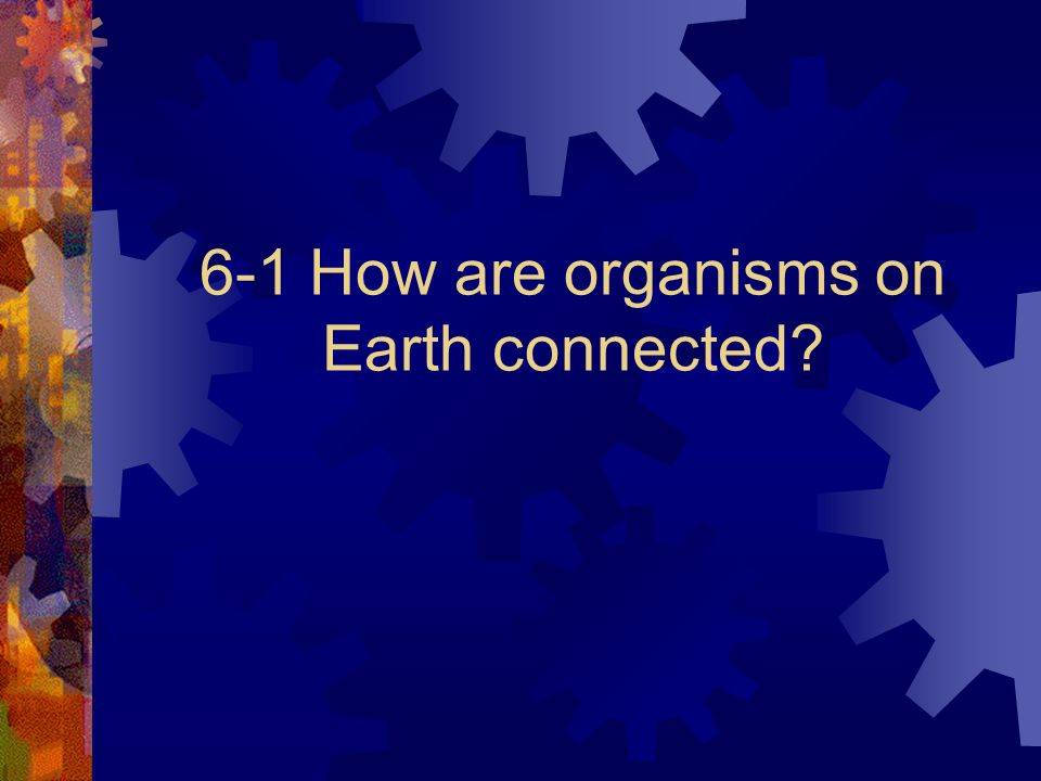 6-1 How are organisms on Earth connected?