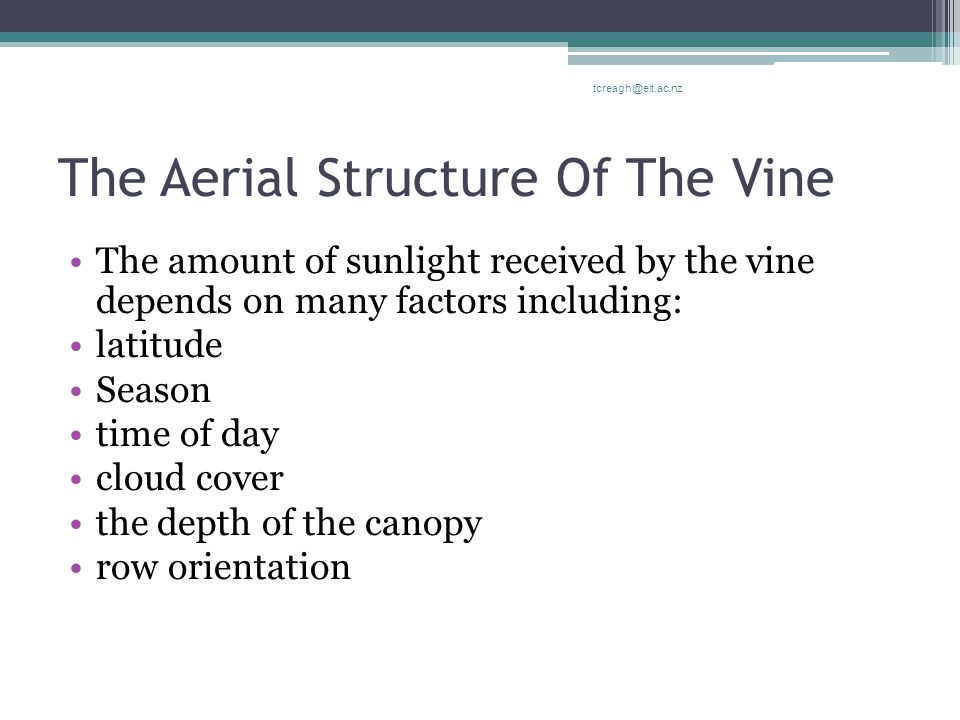 The Aerial Structure Of The Vine The amount of sunlight received by the vine depends on many factors including: latitude Season time of day cloud cove