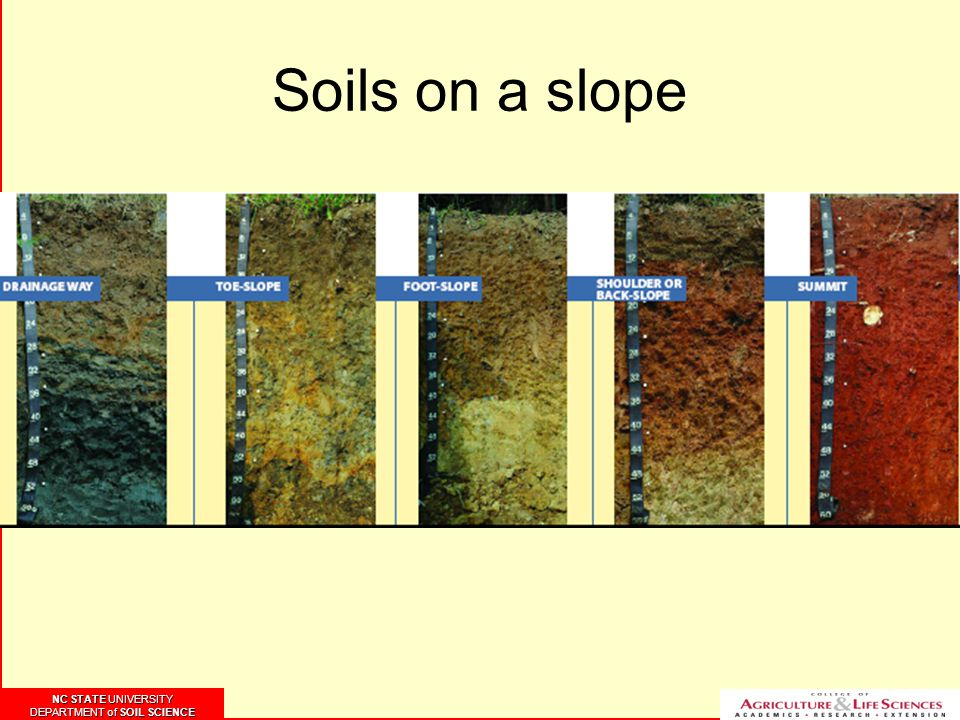 NC STATE UNIVERSITY DEPARTMENT of SOIL SCIENCE NC STATE UNIVERSITY DEPARTMENT of SOIL SCIENCE Soils on a slope