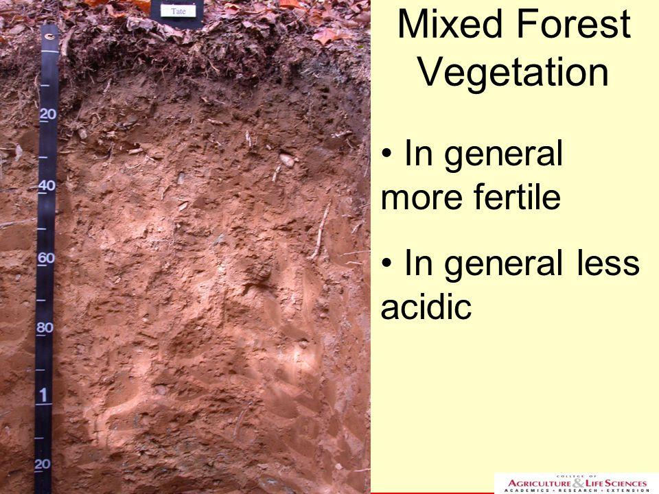 NC STATE UNIVERSITY DEPARTMENT of SOIL SCIENCE NC STATE UNIVERSITY DEPARTMENT of SOIL SCIENCE Mixed Forest Vegetation In general more fertile In gener