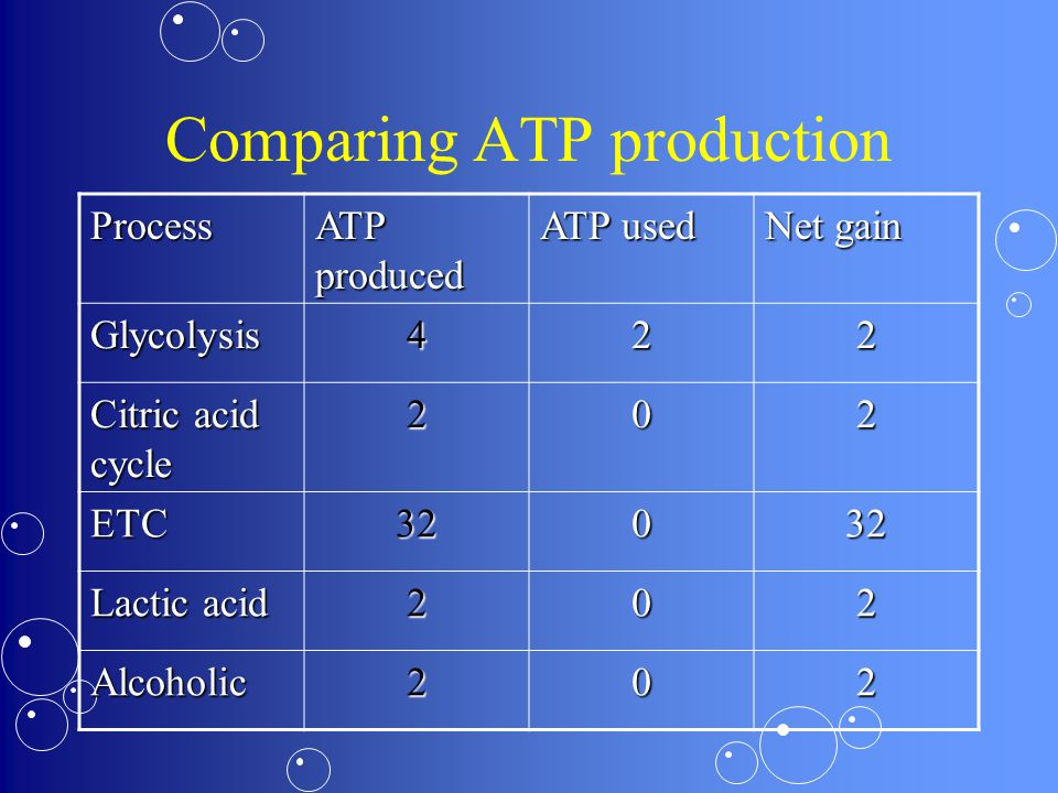 Comparing ATP production Process ATP produced ATP used Net gain Glycolysis422 Citric acid cycle 202 ETC32032 Lactic acid 202 Alcoholic202