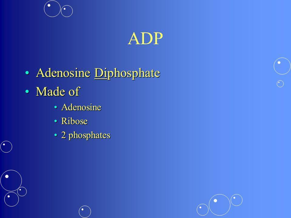 ADP Adenosine DiphosphateAdenosine Diphosphate Made ofMade of AdenosineAdenosine RiboseRibose 2 phosphates2 phosphates