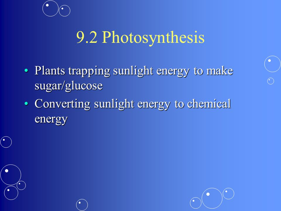 9.2 Photosynthesis Plants trapping sunlight energy to make sugar/glucosePlants trapping sunlight energy to make sugar/glucose Converting sunlight energy to chemical energyConverting sunlight energy to chemical energy