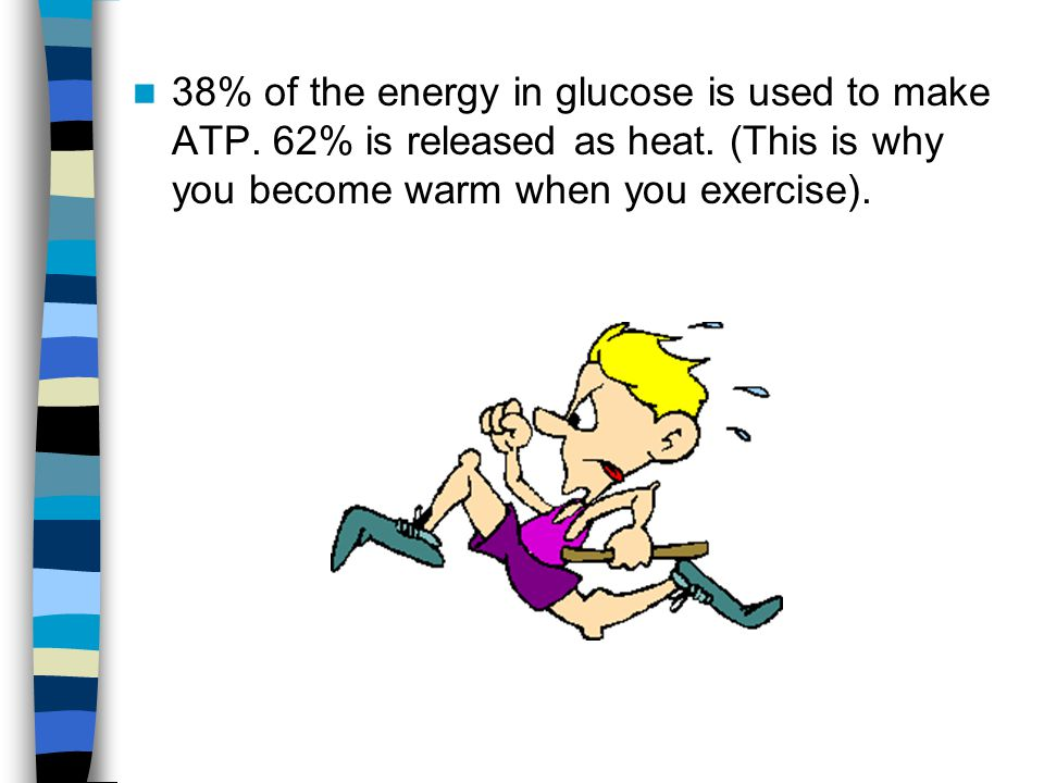 38% of the energy in glucose is used to make ATP. 62% is released as heat. (This is why you become warm when you exercise).
