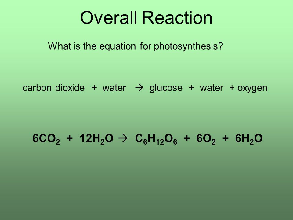 Overall Reaction What is the equation for photosynthesis.