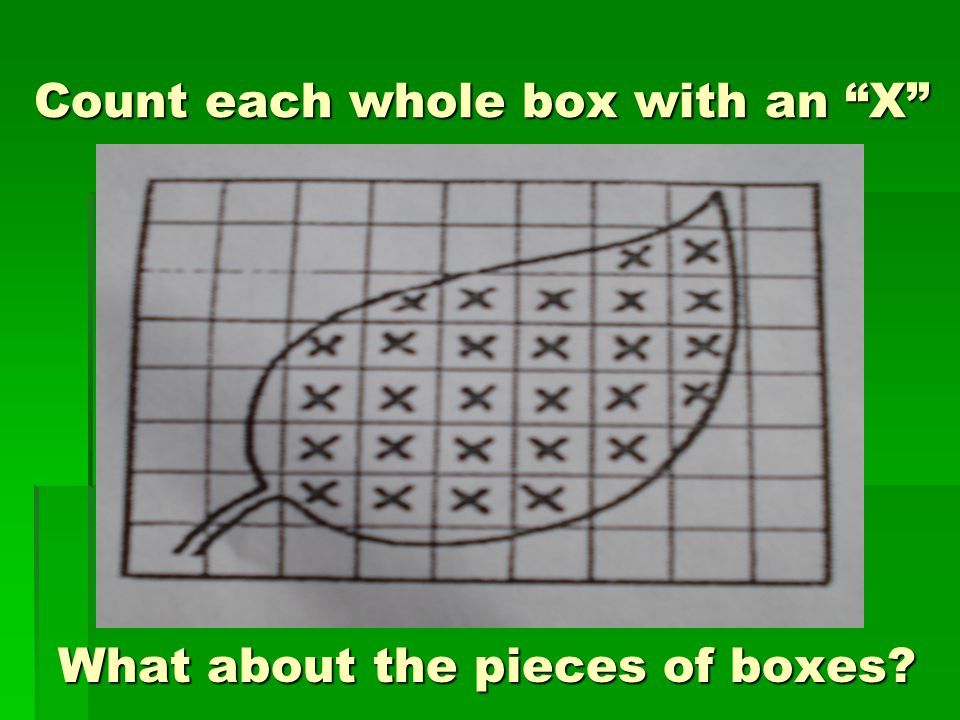 Count each whole box with an X What about the pieces of boxes What about the pieces of boxes