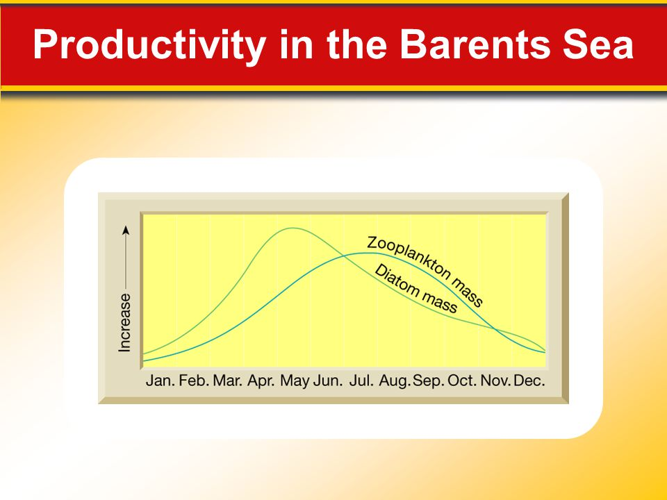 Productivity in the Barents Sea