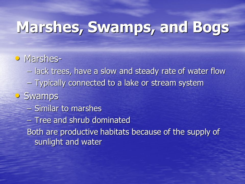 Marshes, Swamps, and Bogs Marshes- Marshes- –lack trees, have a slow and steady rate of water flow –Typically connected to a lake or stream system Swa